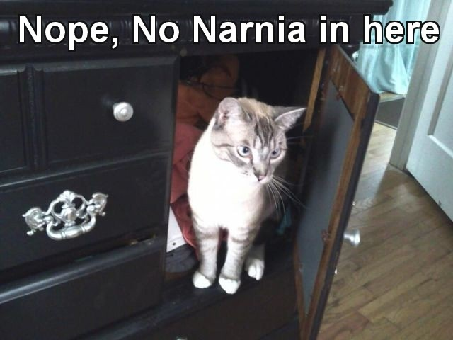 Nope, No Narnia in here