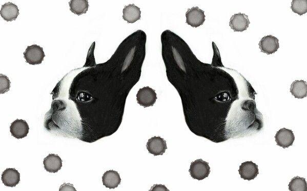 http://blog.naver.com/sa_ranghae m.facebook.com/nanniyaa  #NanNi #난니 #그림그리는여자 #Art #아트 #그림 #수작업 #손그림 #illustration #illust #일러스트 #design #디자인 #sketch #스케치 #drawing #드로잉 #croquis #크로키 #artwork #love #follow #주문제작  #gift #선물 #dog #frenchbulldog