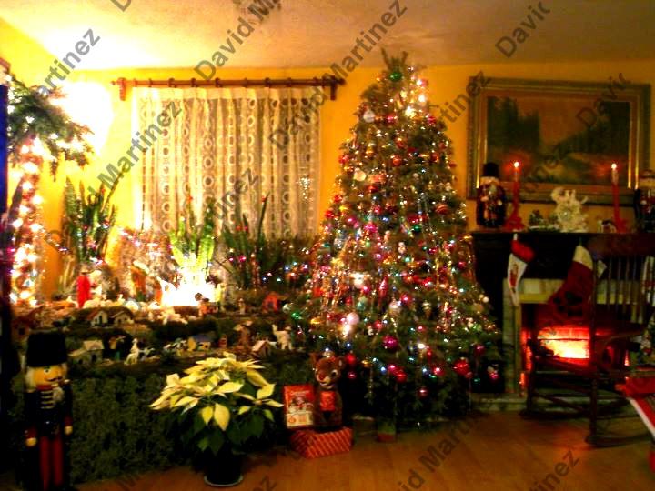 Nacimiento y árbol de Navidad (2011)