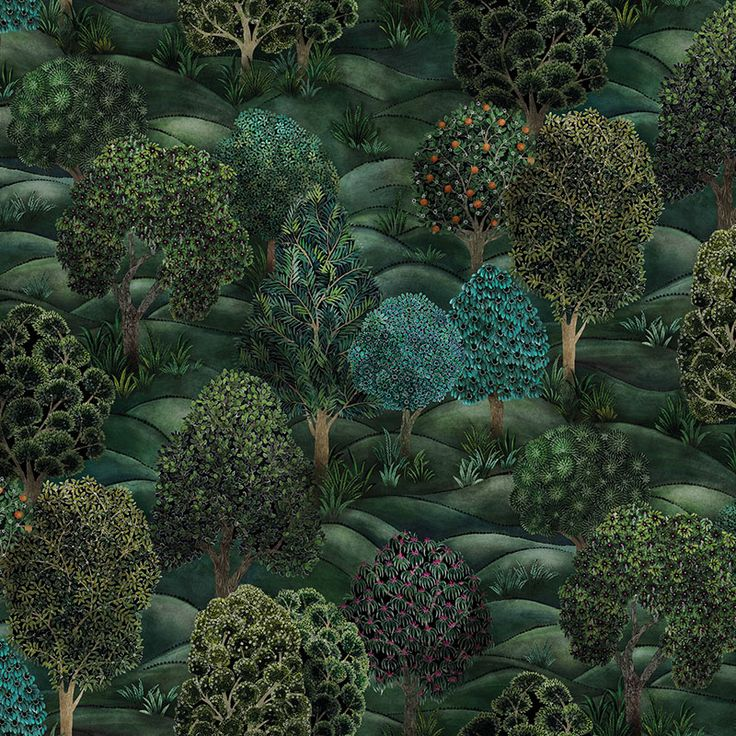 Cole and Son Forest Forest Greens Wallpaper 40% Off ...