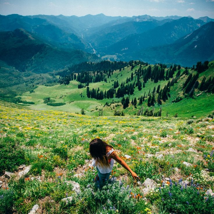 12 stunning landscapes you'll only see in Utah - Matador Network  Wasatch Mountains  Photo: Scott Sporleder