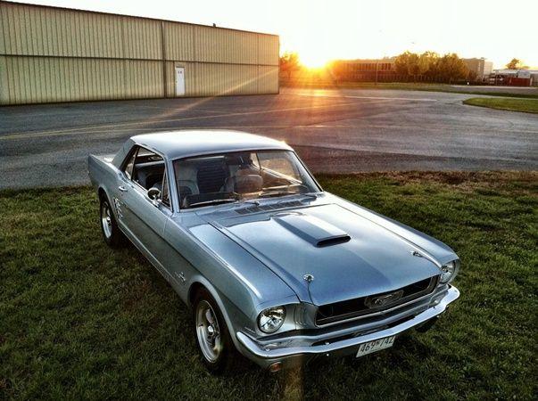 1966 Mustang  My next hobby car.
