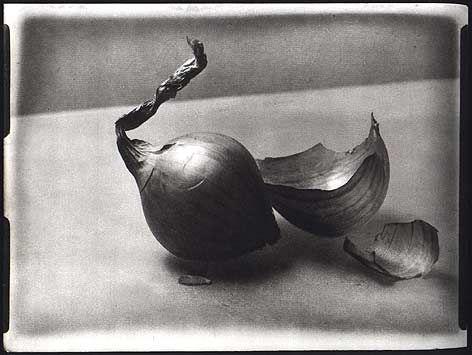Josef Sudek - onion
