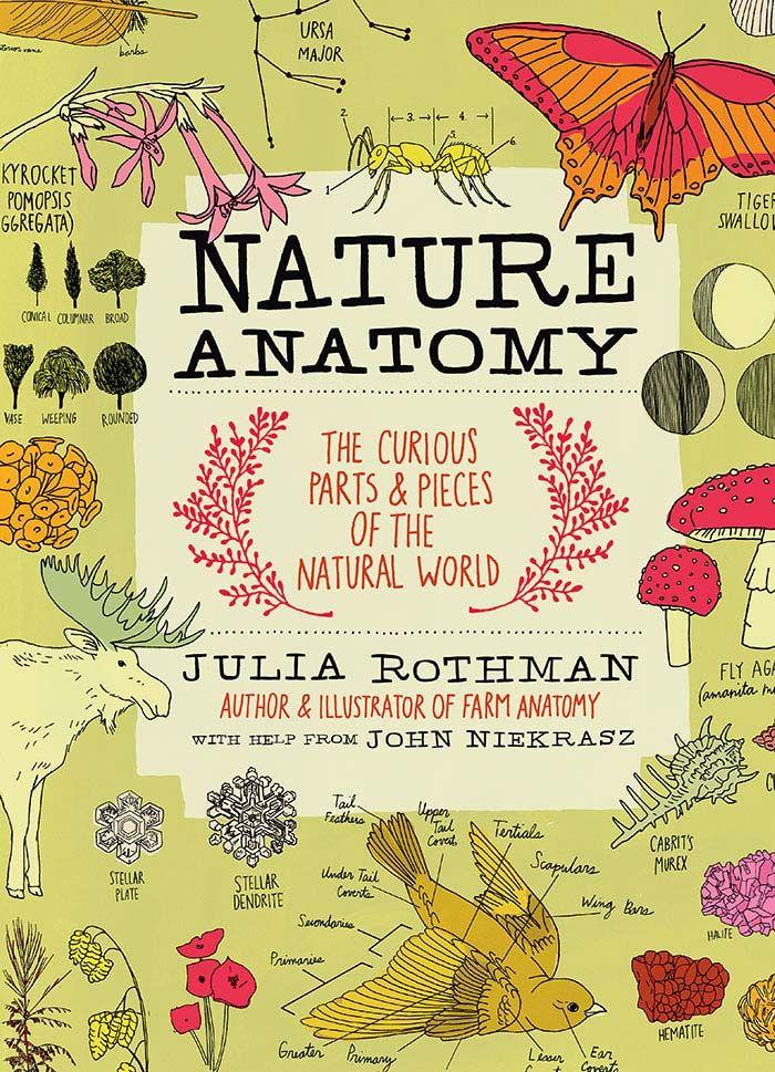 Julia Rothman's Nature Anatomy   Giveaway!