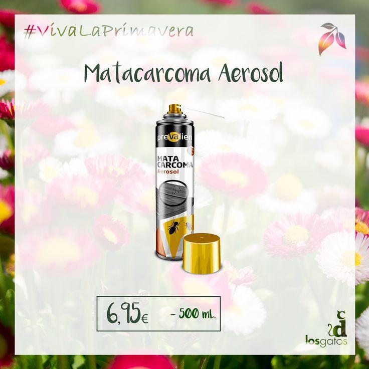 Matacarcoma aerosol marca Prevalien. Frente a xilófagos de aplicación directa mediante pulverización o inyección por cánula para tratamientos preventivos y curativos. 500 ml.