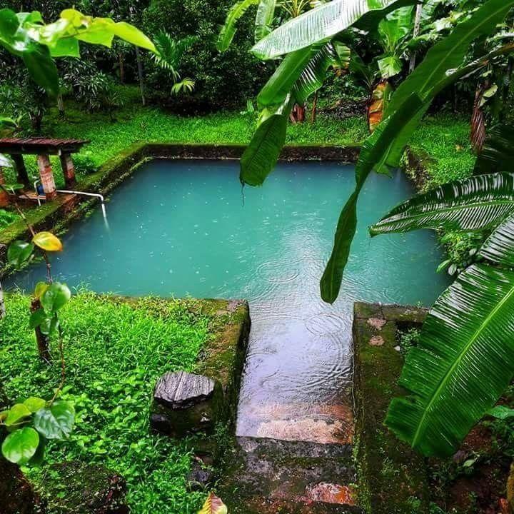 കട ടൻ ച യ ക ട ച ച ട ട ഇത ൽ ഒന ന ക ള ക കണ Village House Design Kerala House Design Indian Garden
