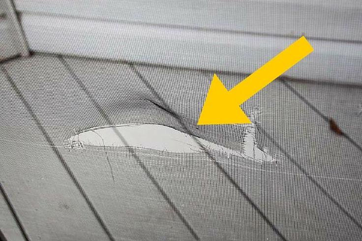 How to Fix a Broken Door or Window Screen Yourself