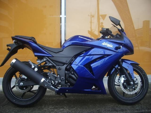 Kawasaki Ninja 600...mine had purple and pink and blue!