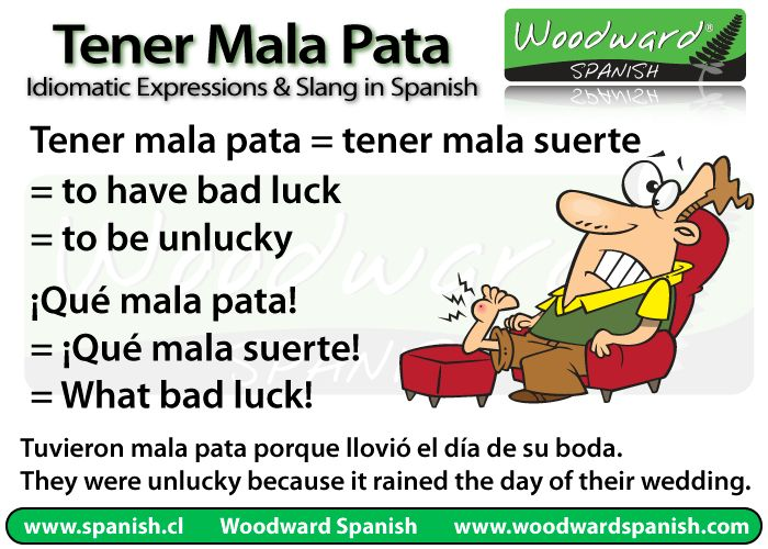 42 Best Tener Expressions Images On Pinterest Spanish Classroom