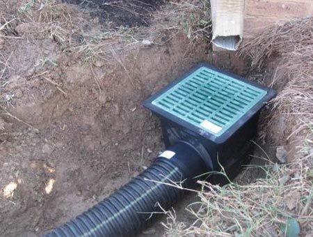 """Green"" tip: Channel water from your downspouts - WBTV 3 News, Weather, Sports, and Traffic for Charlotte, NC"
