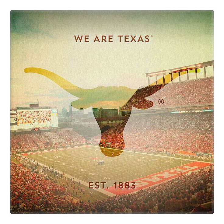 Texas Longhorns Stadium Canvas Wall Art, Multicolor