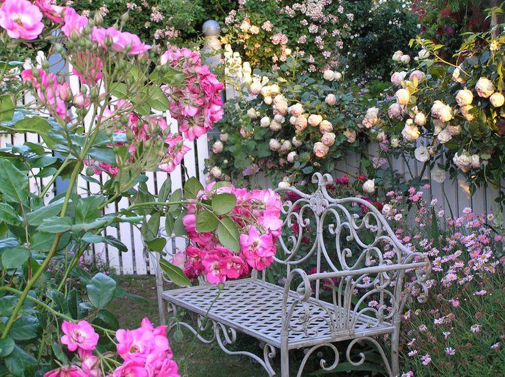 The 25 best jardines con flores ideas on pinterest - Plantas de jardin exterior ...