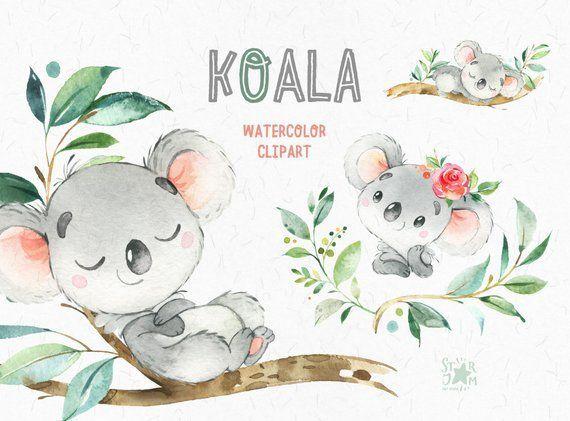 Koala Clipart D Aquarelle De Petits Animaux Australie Ours De