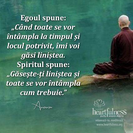"""Egoul spune: """"Când toate se vor întâmpla la timpul și locul potrivit, îmi voi găsi liniștea."""" Spiritul spune: """"Găsește-ți liniștea și toate se vor întâmpla cum trebuie."""" #hfnro   #inspiratii_zilnice   #heartfulness"""