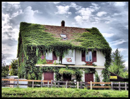 43 best german country homes images on pinterest for German cottage house plans