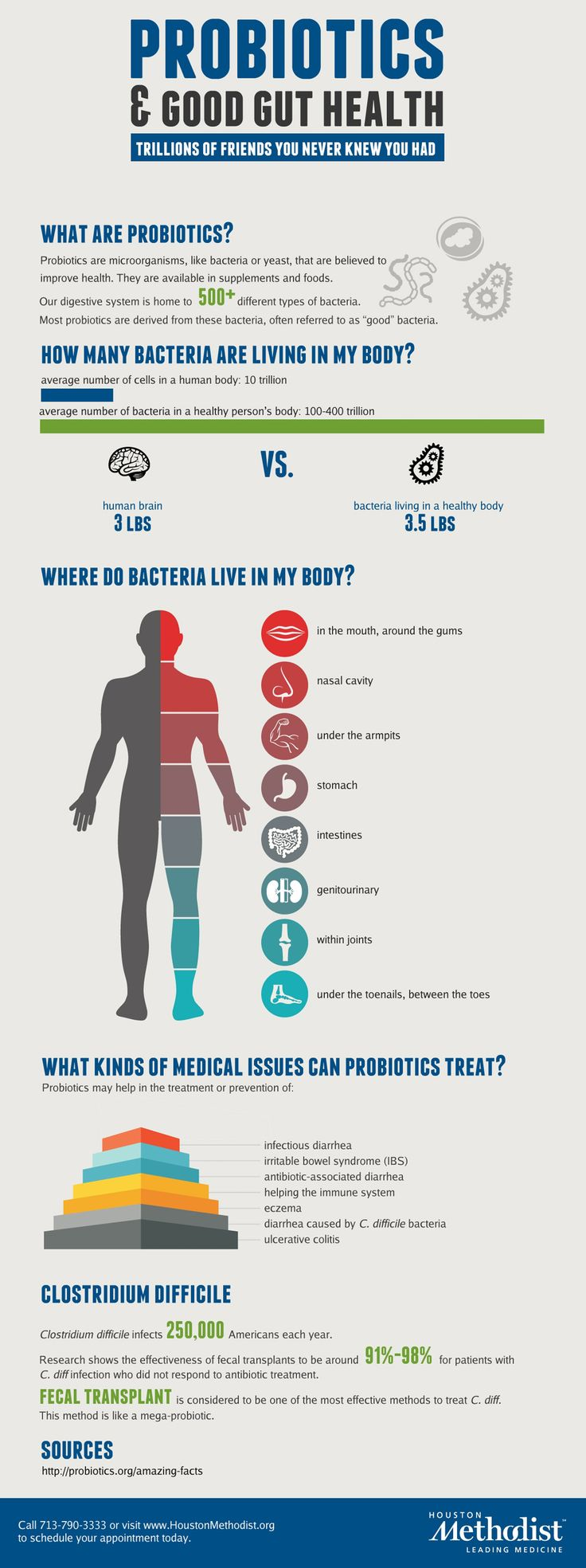 Probiotics and Health Infographic