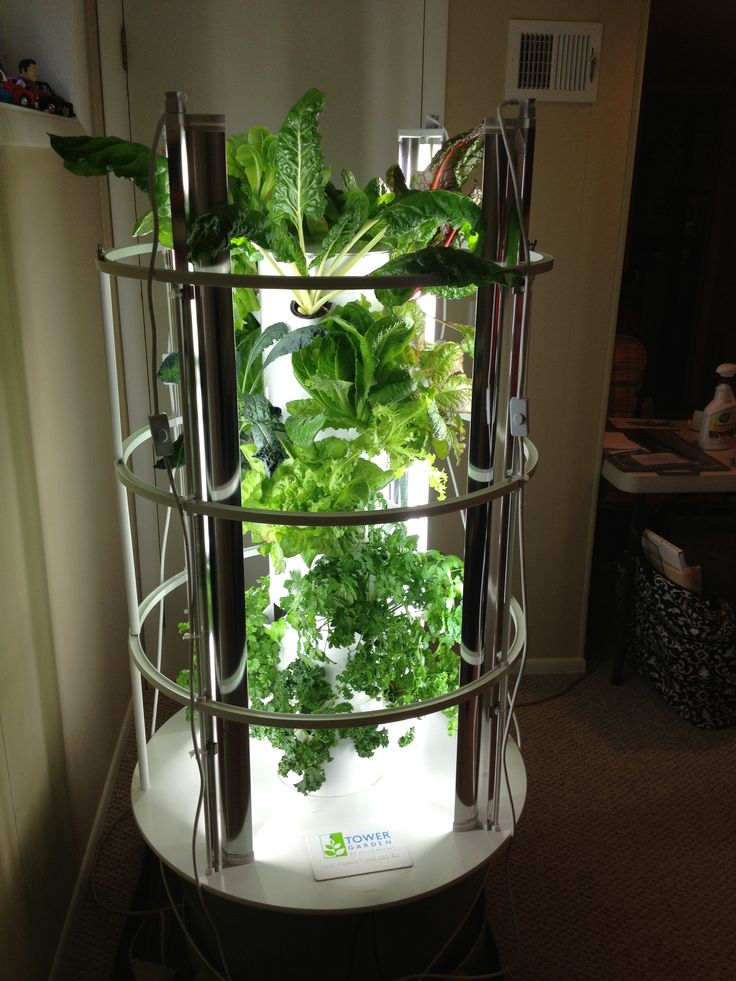 My Indoor Tower Garden With Grow Lights Moves Outside In