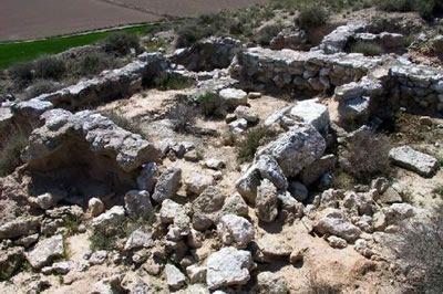 Yacimiento de Valdetaus en Tauste, Patrimonio en la Provincia de Zaragoza