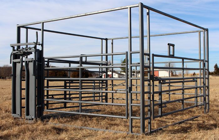 Galyean Lives stock Trailer - Heavy Duty Butterfly Cattle Gates from 2x4 Tubing with Pipe Latch