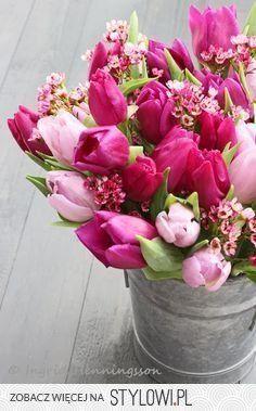 (60) Tulip na Pintereście | Róże Angielskie i Ikebana na Stylowi.pl