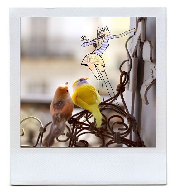 Margaux Motin printemps birds