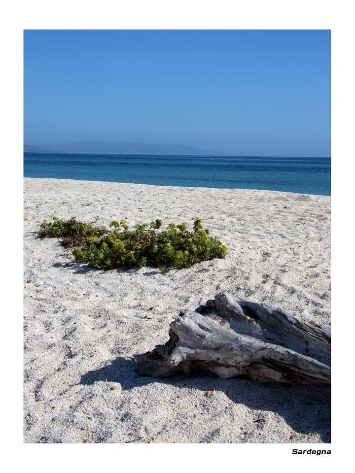 Paradise island in the Mediterranean.