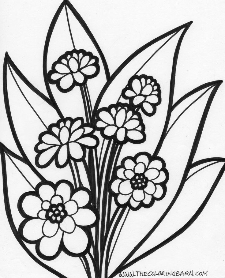 Free Colouring Pages Flowers Printable : 115 best flowers c.p. images on pinterest