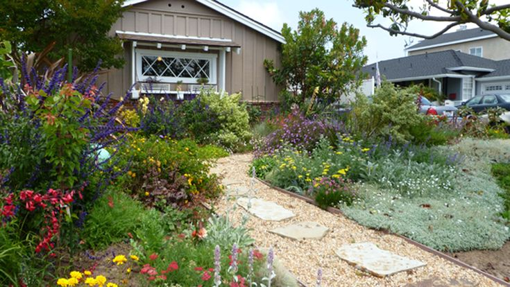 No grass front yard! | My Work: Botanica Landscape ...