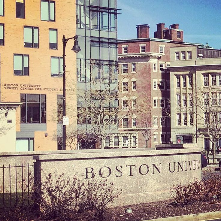 enjoying a walk around Boston University #bostonuniversity #bostonterriers #boston by davebanas9