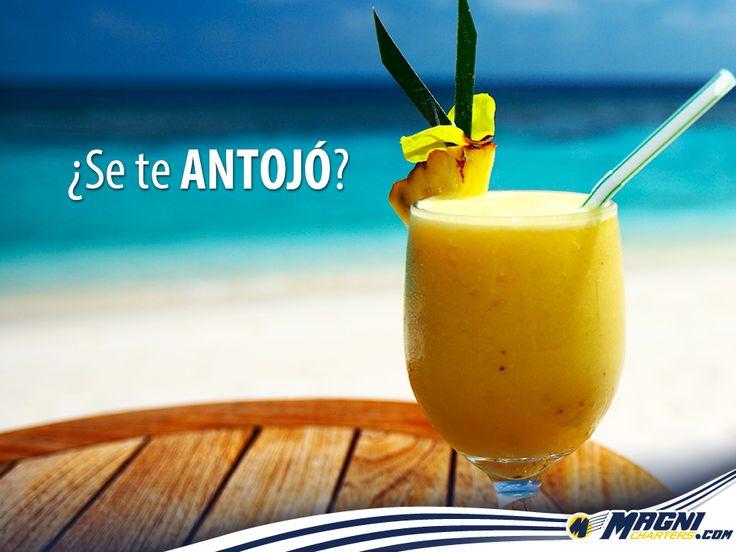 Un poco de todo lo que te está esperando en tus vacaciones.