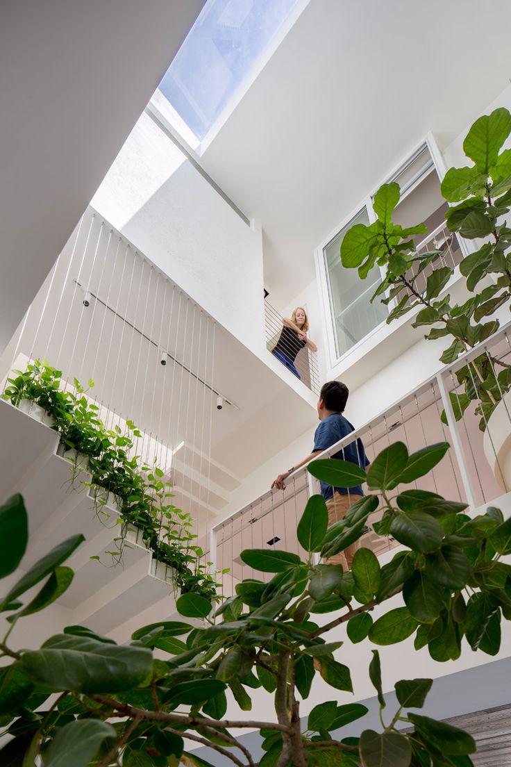 in Weiß gestrichene Wände, Tageslicht vom Dachfenster und grüne Pflanzen
