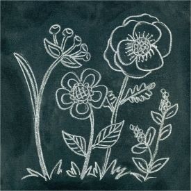 Tutorial shows how to create Anthropologie inspired flower chalk art with instructions to transfer your design to your  chalkboard.