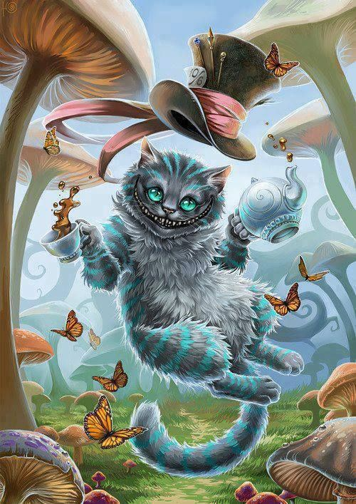 The Mad Catter  Another [Cat Swag] post