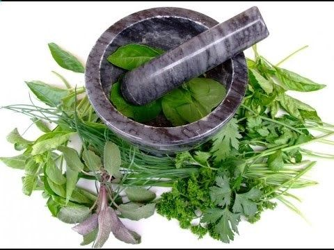 Herbs For Kidney Disease, Symptoms Of Kidney Disease, Types Of Kidney Disease, Stage 2 Kidney Disease reversing-kidney-... Reverse Chronic Kidney Problems With All Natural Treatment the truth about all natural holistic kidney treatments what works and what your Doctor is NOT TELLING YOU! Here are just a few of the misconceptions about kidney disease treatments... 5 CRUCIAL FACTS YOU SHOULD KNOW: KIDNEY TREATMENT PROBLEM # 1: