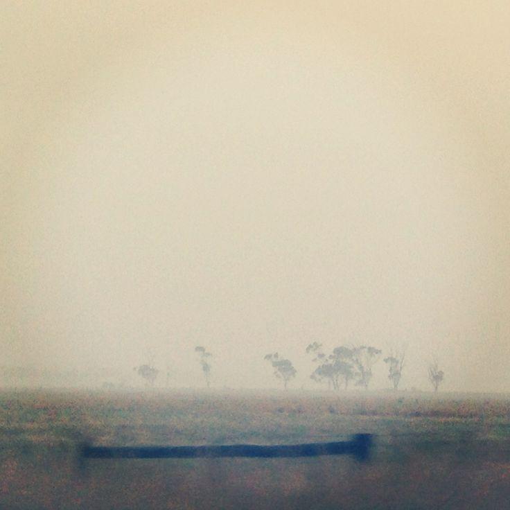 Minimalist / Australian roadside Fiona Therese Photography