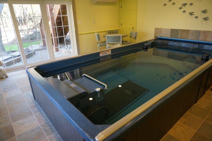 Beautiful Endless Pool In Basement