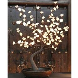 lit leaf bonsai tree