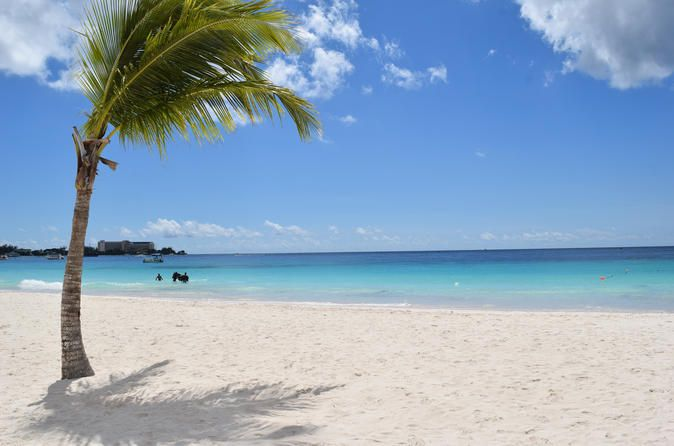 Visiting Barbados on a cruise ship? The Pirates Cove Beach Day includes round-trip transportation from the ship, beach chairs and umbrella, and a welcome drink! Spend the day swimming, snorkeling and just relaxing on the gorgeous tropical beach.