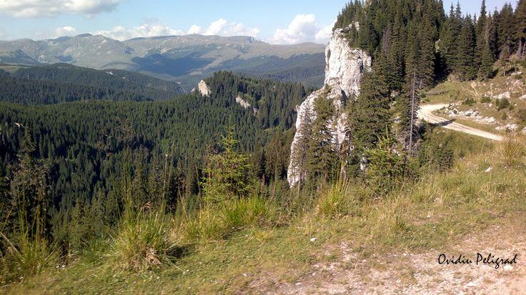In muntii Bucegi
