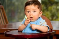 Meat Baby Food Recipes