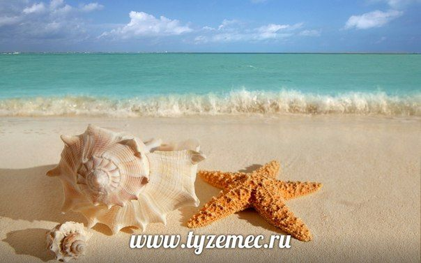 "Турагентство ""Туземец""горящие туры из Казани"