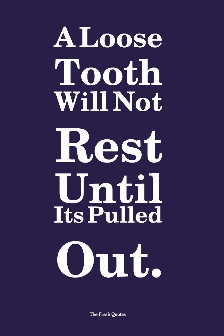 Dental Quotes Dentist Quotes Fascinating Best 25 Dentist Quotes Ideas On
