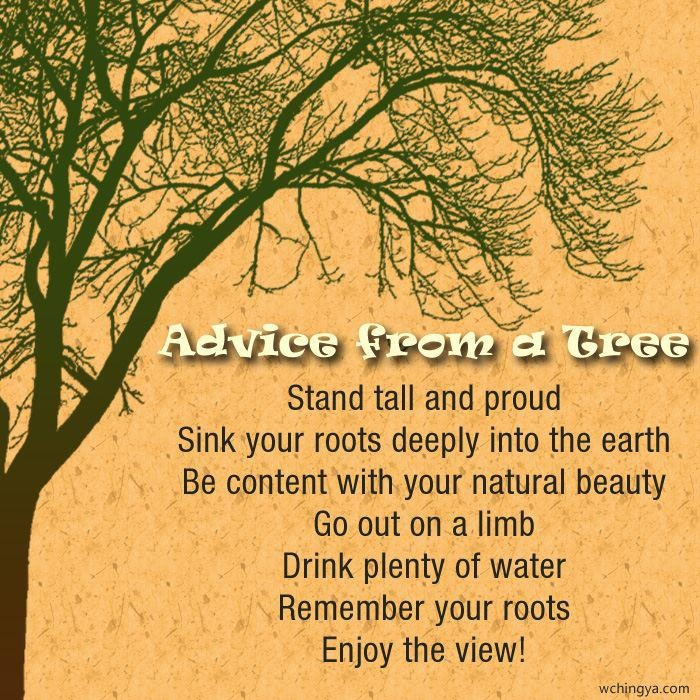 Inspirational Quotes About Nature: 59 Best Images About Inspirational Quotes On Pinterest