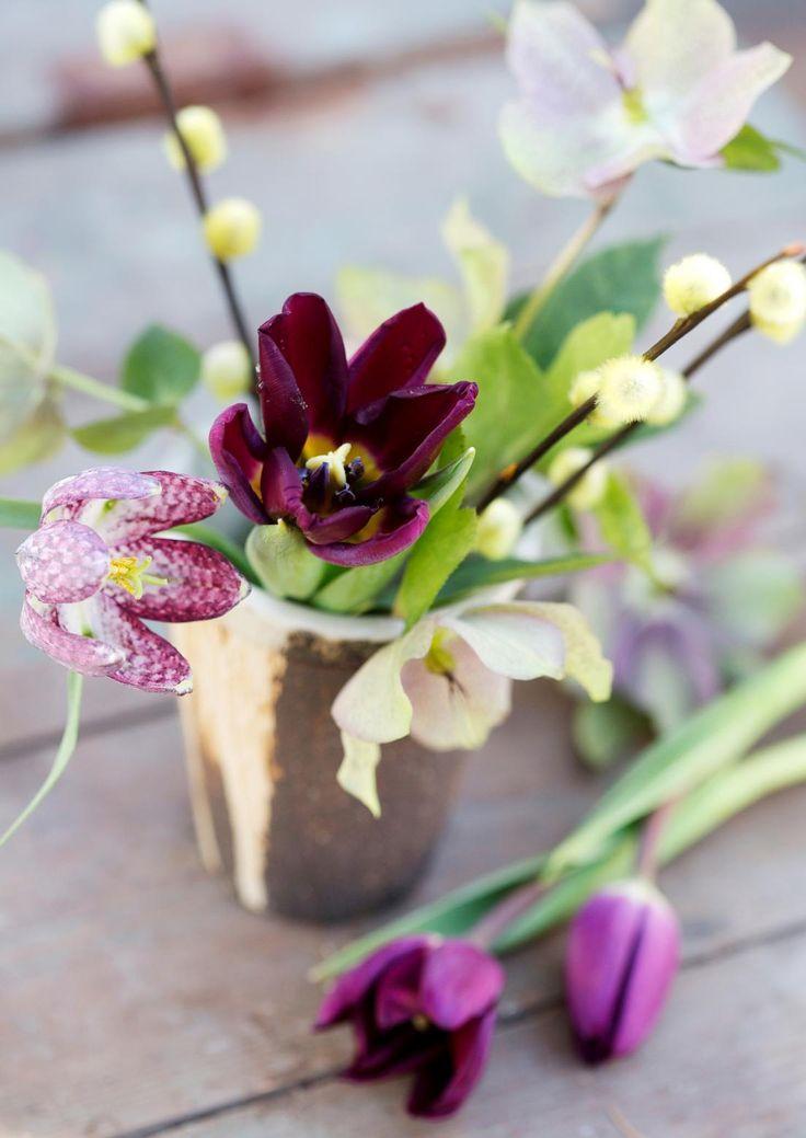 6 x raikas keväinen kukka-asetelma