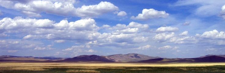 To Mongolia, by Ambulance - Follow blood, sweat and gears.