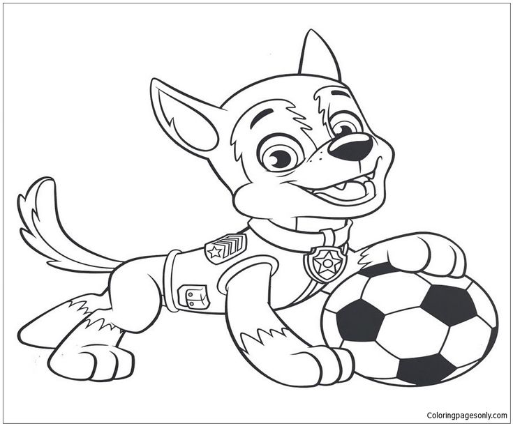 Tracker And Marshall Coloring Page | Coloring | Paw patrol ...