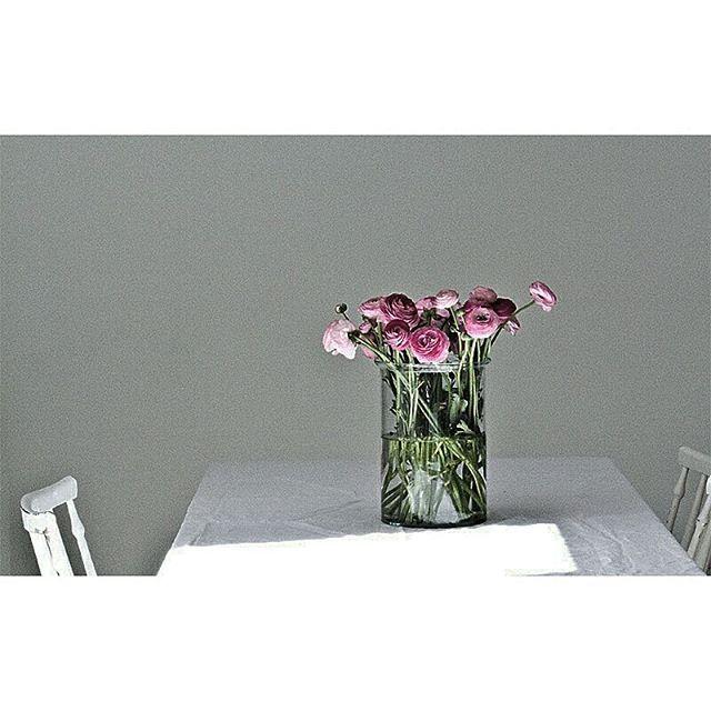 Wiosna. #pierwszydzienwiosny #spring #flowers #light #przymoimstole #jaskry #ranunculus #vase #tinekhome