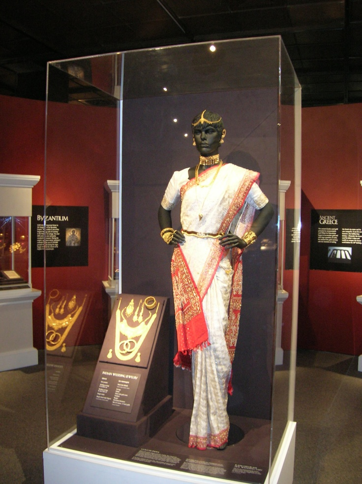 Large museum display case