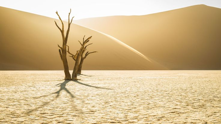 My latest article dealing with the captured of photographs at Deadvlei, Namibia.
