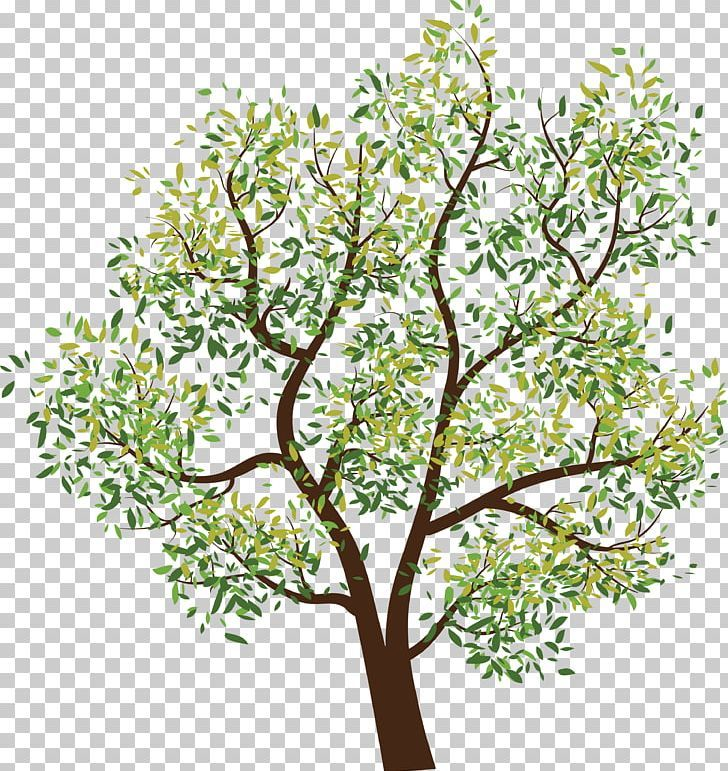 Tree Png Tree Computer Icon Image Png